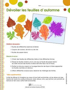 Dévoiler les feuilles d'automne