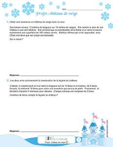 Projet: château de neige