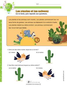 Les plantes et les animaux